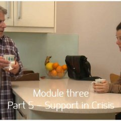 [Module 3] Part 5 – Support in Crisis